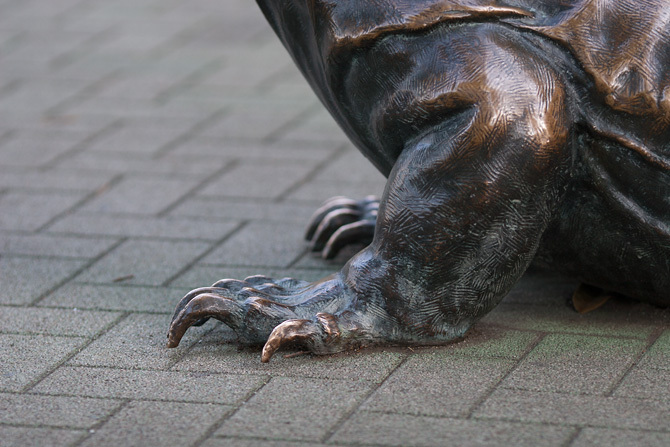 カメの銅像の手